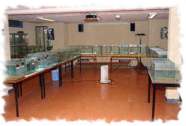La salle aménagée, en vue d'une bourse pour une réunion AFC Normandie