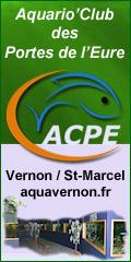 Aquario'Club des Portes de l'Eure - Club aquariophile Vernon Saint-Marcel