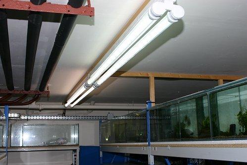 Rampes d'éclairage en plafond
