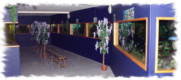 Aquavernon, la salle d'exposition